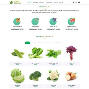 theme-wordpress-thuc-pham-sach-thuc-pham-huu-co-organic-2